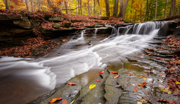 South Chagrin Reservation 3