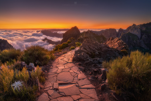 Path into the Light by Alexander Lauterbach