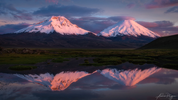 Payachata volcanos, the twins reflected in pink by Andres Puiggros