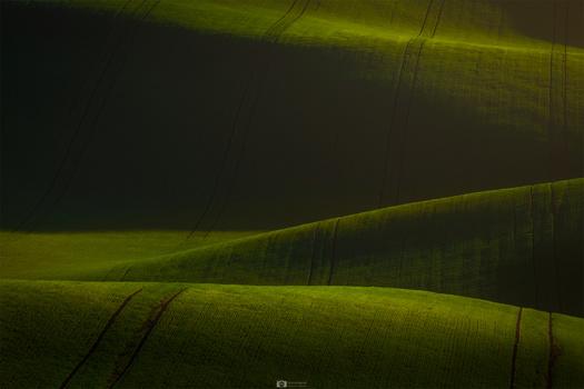 Moravian spring by Nejc Trpin