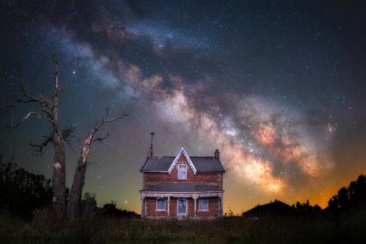 Dead Tree House by GARY CUMMINS