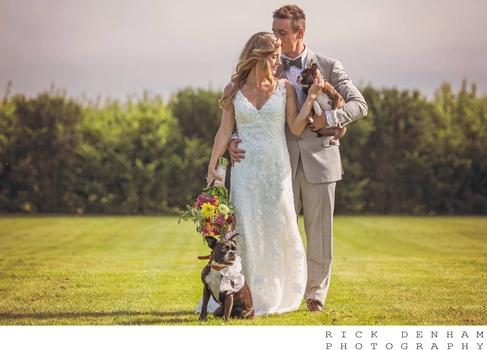 Dog days wedding