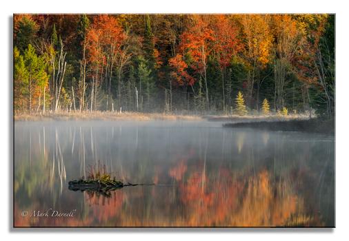 Upper Peninsula Fall Reflection: by Mark Darnell