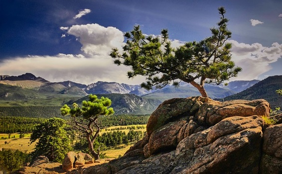 Mountain Valley Guard by Mark Mathews