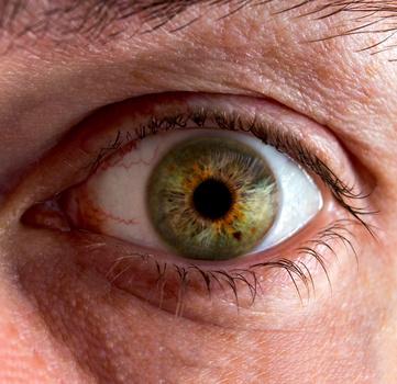 Green Eye by Robert Felker