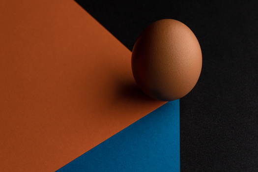 Egg by Skyler Ewing