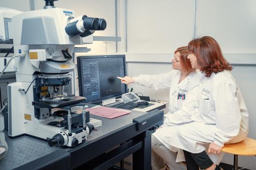 Near Microscope by Alexander Petrenko