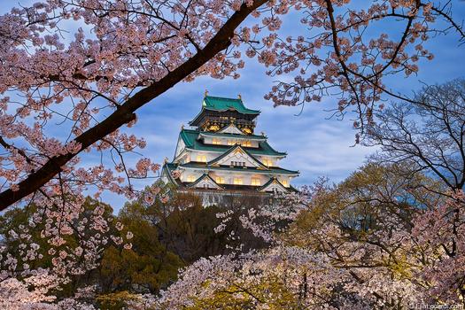 The Harmony of Japan