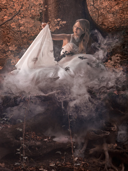 Autumn Bride II