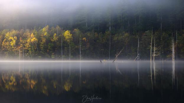 Light and shadow by Sho Hoshino