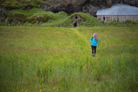 Wandering the green fields of Iceland