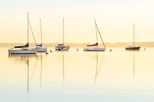Mendota Sailboats At Sunrise