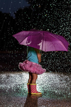 Rainy Day Twin B