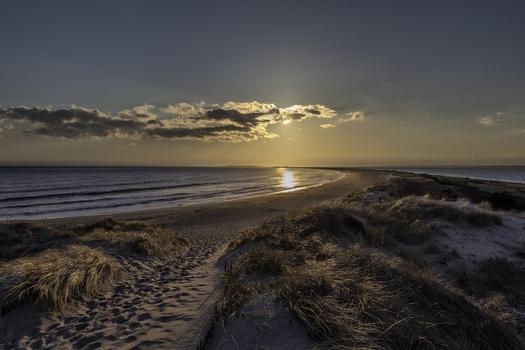 Sunset Dunes I