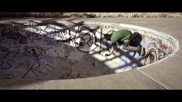Desert Skateboarder