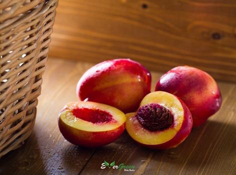 Nectarines by Shahed Sohrabi