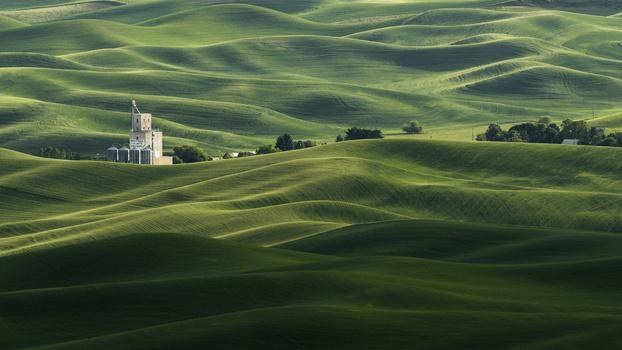 The Rolling Fields of Palouse