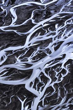 Arctic Veins II by Mikkel Beiter