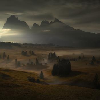 Moonlight shadow by Piotr Skrzypiec