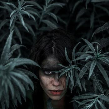 Echo by Aurelija Karaliunaite