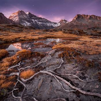 Dry Autumn by Alvaro and Jose Manuel Perez
