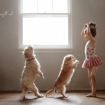 Ballet Practice by Robin Brazill