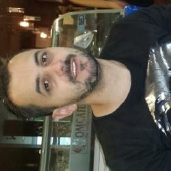 EDIN ALAJBEGOVIC's picture