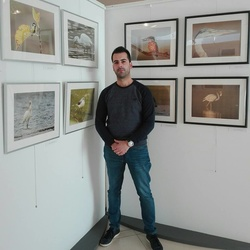 Tiago Sousa's picture