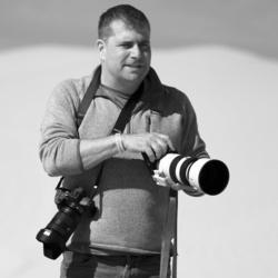 David Schloss's picture