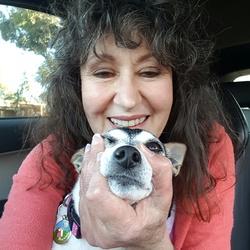 Roz Batten's picture
