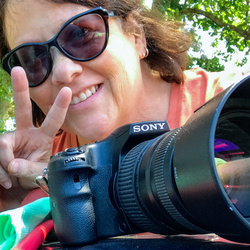 Amy Jo Georgi's picture