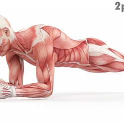10 Stretching Exercises to Make You As Flexible As a Cat in 4 Weeks on Fstoppers