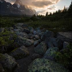 Follow The Green Rock Road