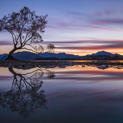 Wanaka Reflections by Cory Marshall