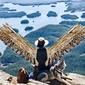 Drone Sapien's picture