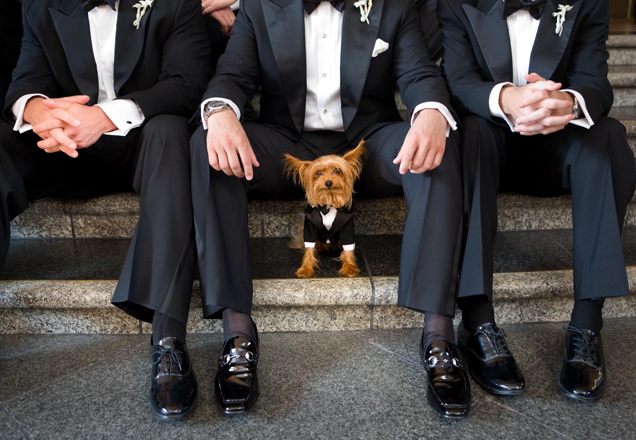 Joe Buissink, fstoppers, wedding photography,