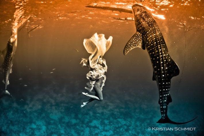 fashion whale shark shoot Kristian Schmidt