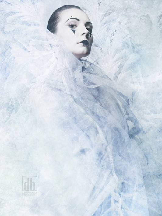 The Ice Queen by David Bickley Photography