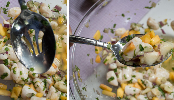 food_photography_ceviche_lighting_slotted_spoon