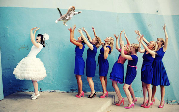 Fstoppers Brides Throwing Cats 2
