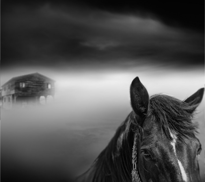 Tangoulis-Misty-Scapes-4
